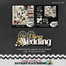 dh-OurDisneyWedding-wa_preview.jpg