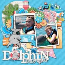 dolphin_copy_small.jpg