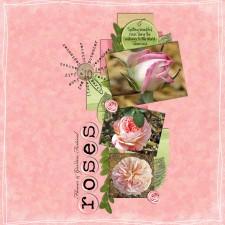 fg_roses600.jpg