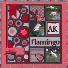 flamingo_ak-_pink_glasses.jpg