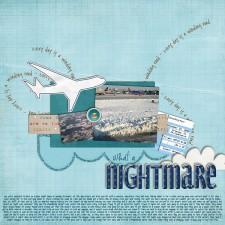 flight_home09_600.jpg
