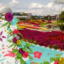 flowers-at-Epcot.jpg