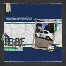 herbie-web.jpg