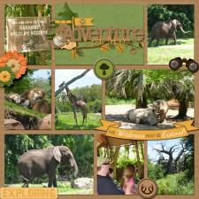 safari_copy.jpg