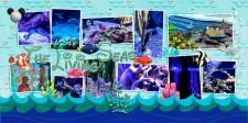 web_LivingSeas.jpg