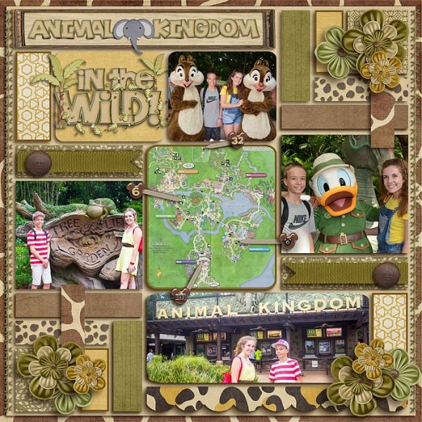 Animal_Kingdom21