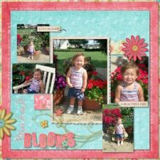 Boardwalk_Blooms_-_Page_001_600x600_.jpg