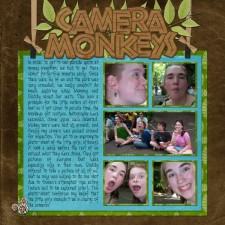 Camera-Monkeys.jpg