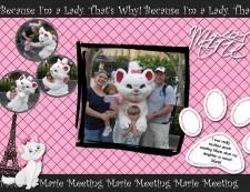 Meeting-Marie-redo.jpg