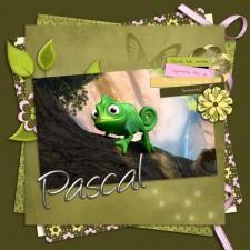 Pascal-klein.jpg