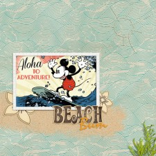 Surfer-Mickeyweb.jpg