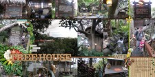 Swiss_Family_Treehouse_Nov2012_smaller.jpg