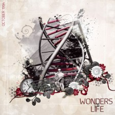 wonders-of-life-1994_edited.jpg