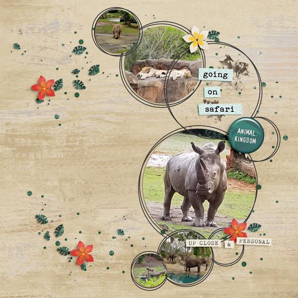 19mar_safari