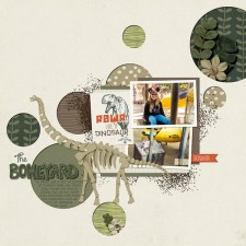 1-The-Boneyard-copy.jpg
