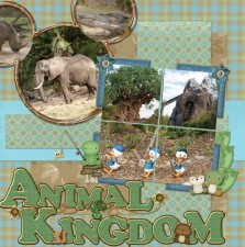 Animal-Kingdom2.jpg