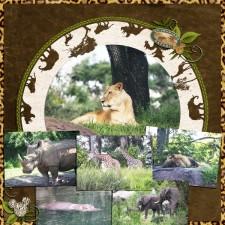 Safari_copy_small.jpg