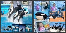 SeaWorld_Shamu_Show.jpg
