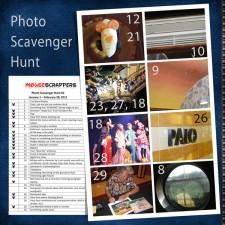 DCL11-Photo-scavenger-LHS.jpg