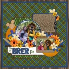 BrerFox_Feb2009_web.jpg