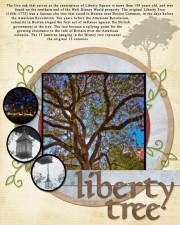 201109-MK-LibertyTree-72.jpg