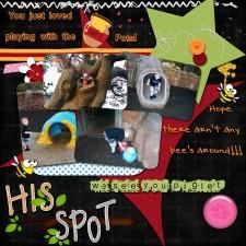 hisSpot_450x450_.jpg