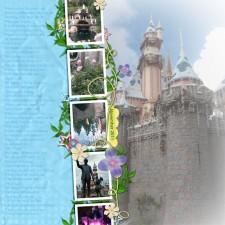 CastlePage_Nov2011_web.jpg