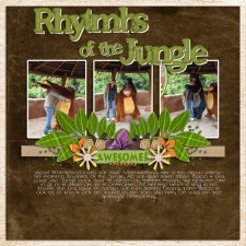 93_-Rhythms-of-the-jungle.jpg