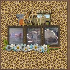 going_on_safari.jpg
