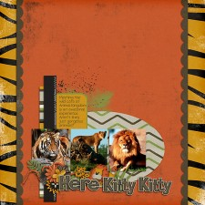 ss_Kittyweb.jpg