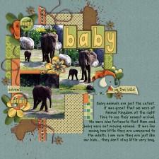 Baby_Elephant.jpg